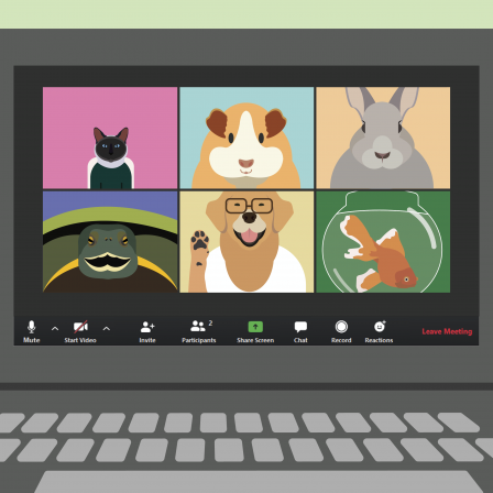Virtual meeting of pets